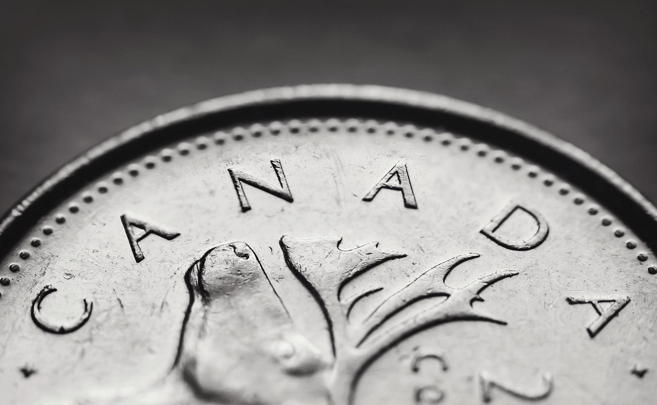 GORA - Bonheur Financier, Préparation d'Impôts, Comptable et Services Financiers Homepage, Picture of a Closeup Canadian Quarter